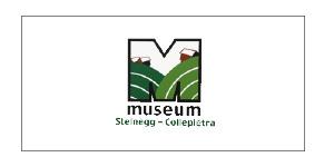 museum-steinegg
